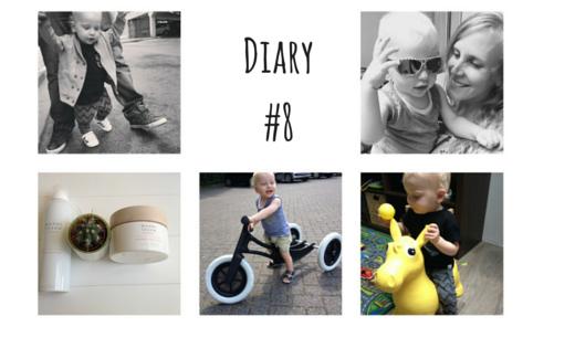 Diary8 520x315 - Diary #8
