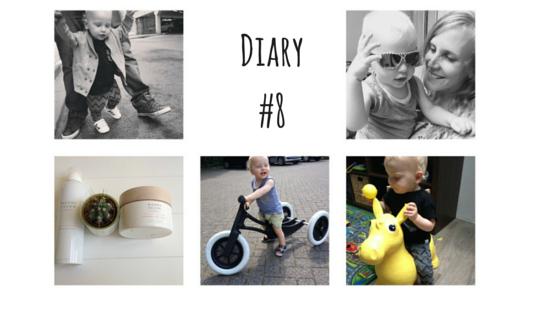 Diary8 - Diary #8
