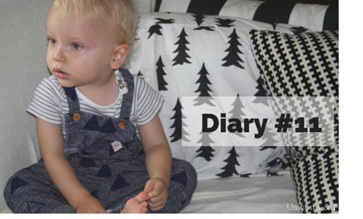 Diary 11 520x315 - Diary #11