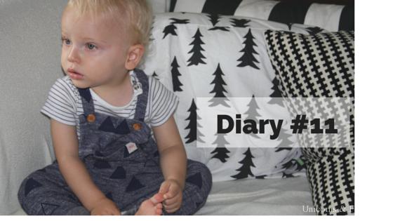 Diary 11 - Diary #11