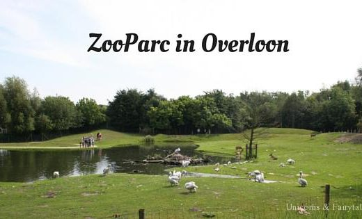 Zooparc - unicorns & fairytales