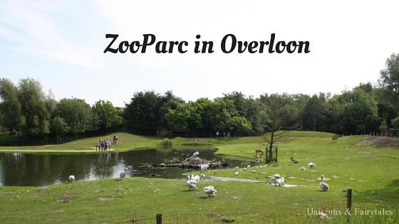 Zooparc - unicorns & fairytales