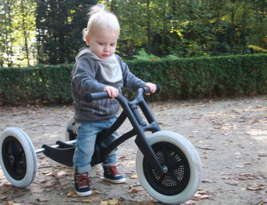 IMG 6670 520x400 - Wishbone bike