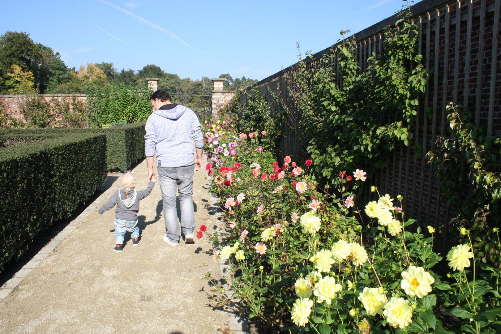 IMG 6715 - Het Vordensteinpark | Op stap