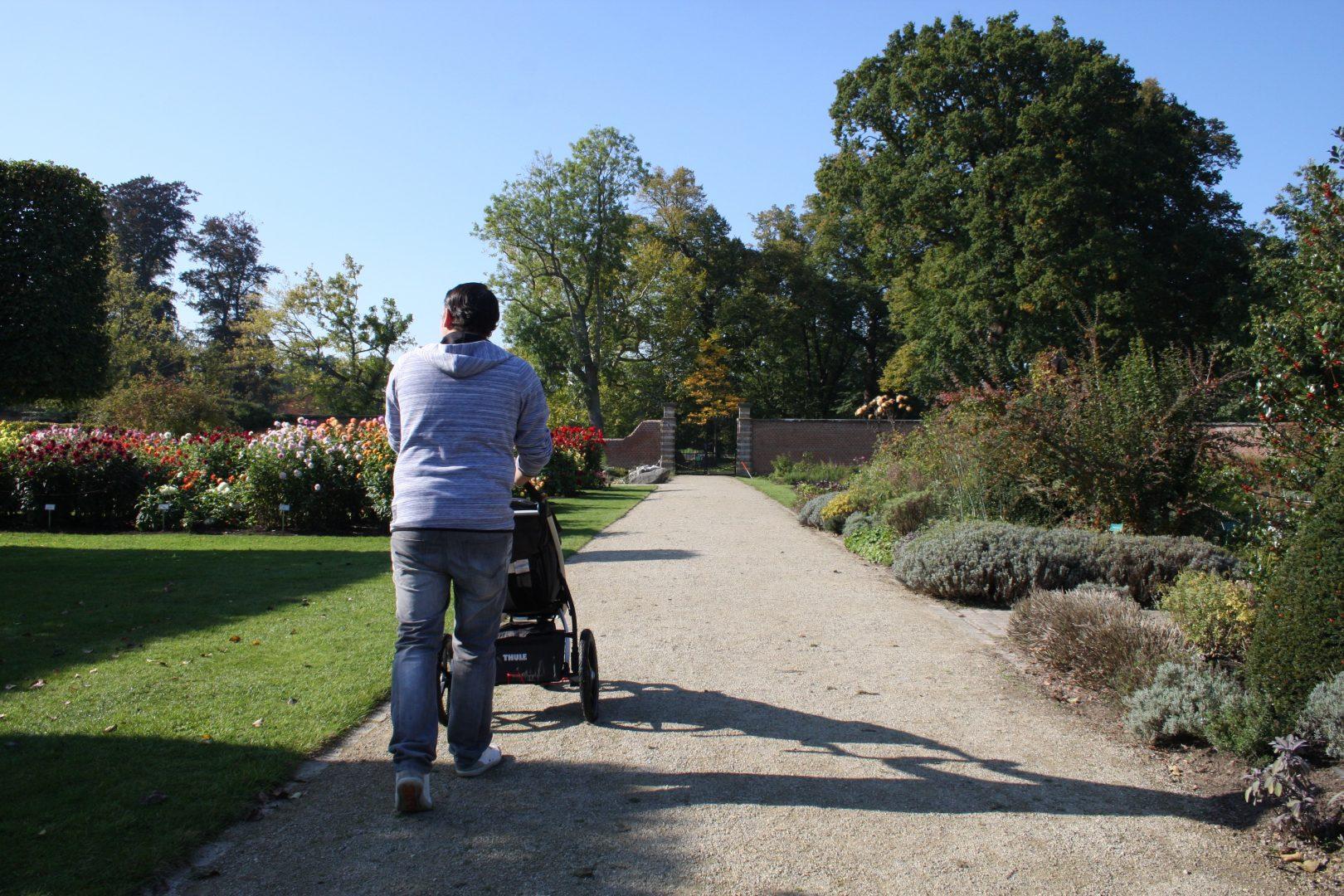 IMG 6744 - Het Vordensteinpark | Op stap