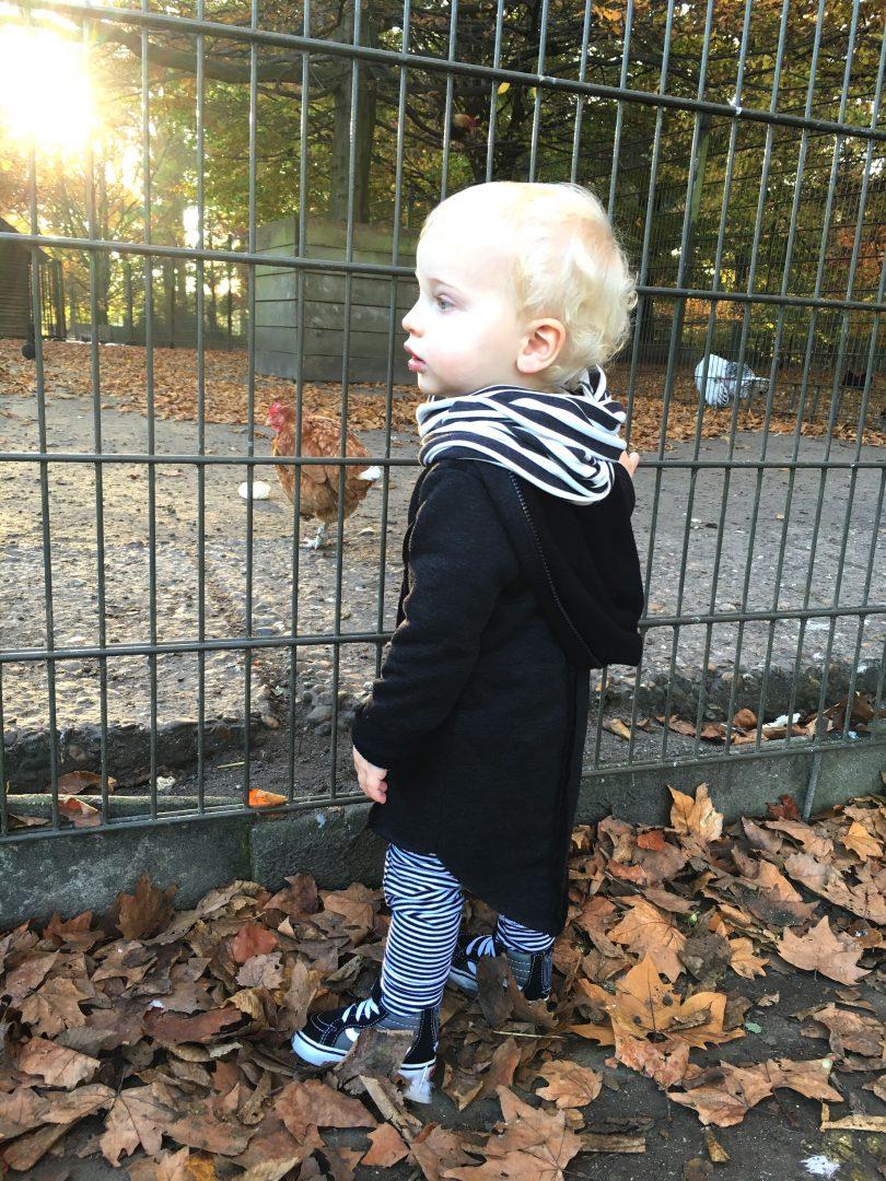 autumn4 - Diary 20 met een belangrijke boodschap