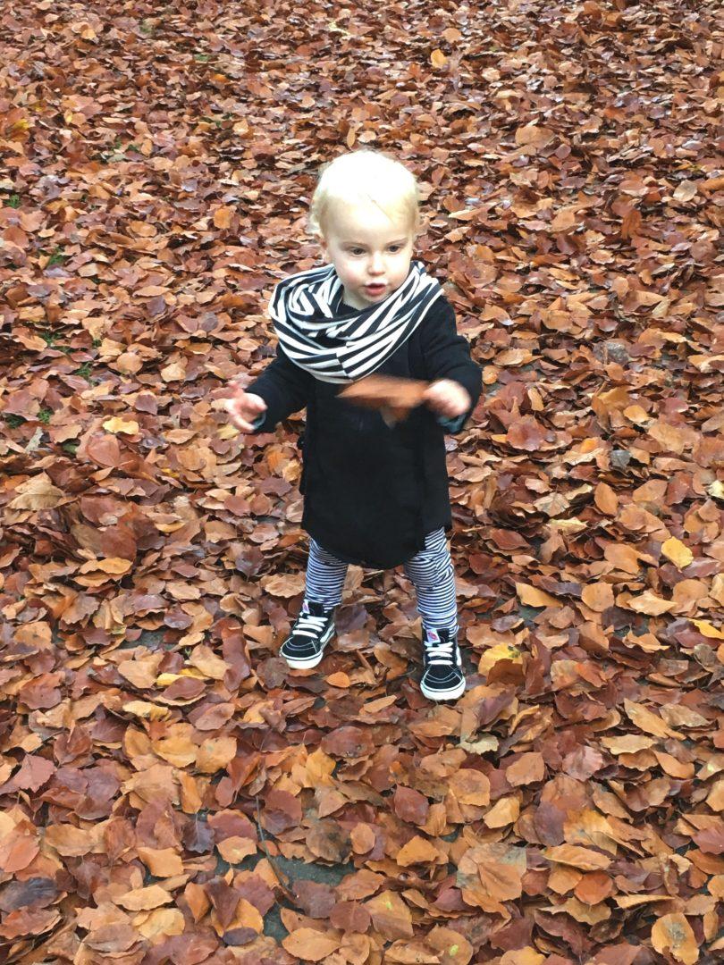 autumn8 - Autumn cozyness & WIN