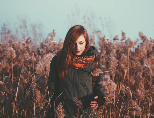 media 37 520x400 - Meet Winter