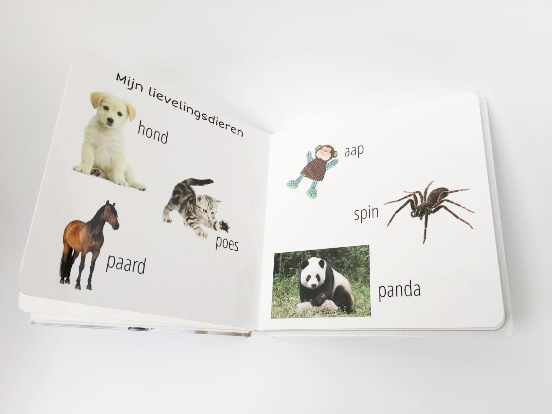 FullSizeRender 377 - Boekje van karton & WIN