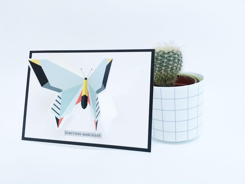 FullSizeRender 40 - Musthave | Origami Zoo & win