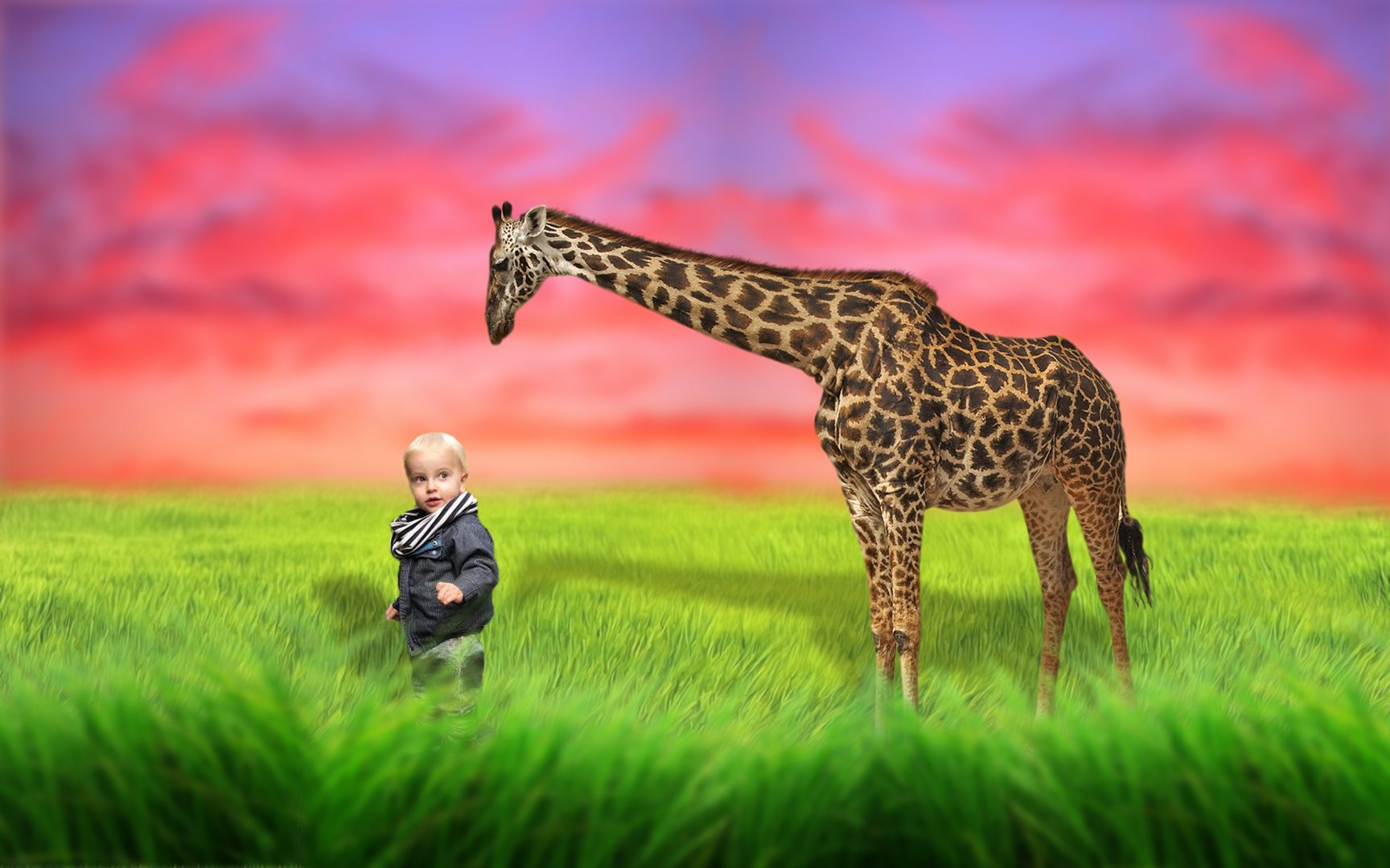 Giraffe11 - Jayno Design - magical pictures & win