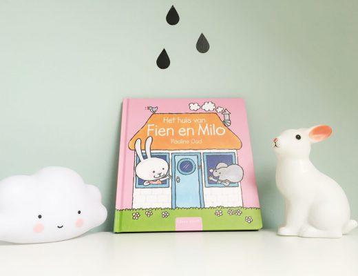 FullSizeRender 1501 520x400 - Boekentip | Het huis van Fien en Milo