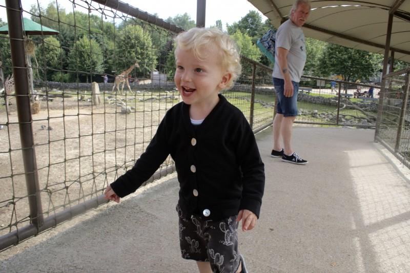 Olmense zoo - unicorns & fairytales