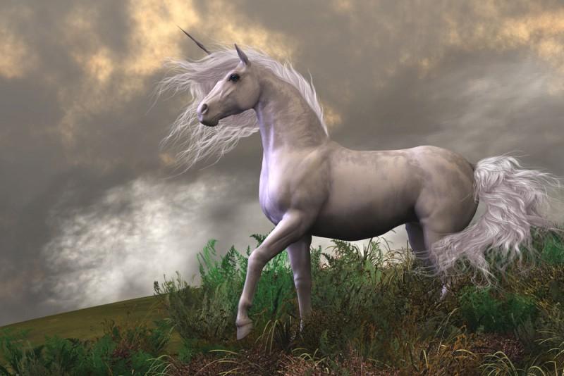 shutterstock 123328486 - De leukste unicorns gadgets