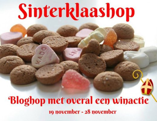sinterklaashop - unicorns & fairytales
