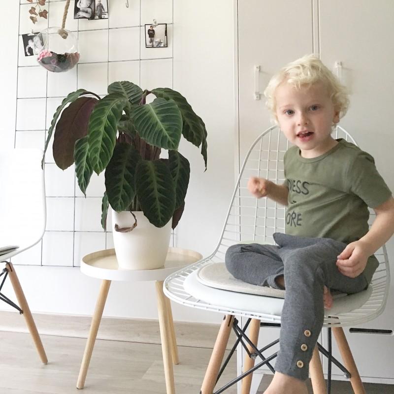 IMG 7517 - Webshoptip | Tofshirt, shirts met een leuke print & win