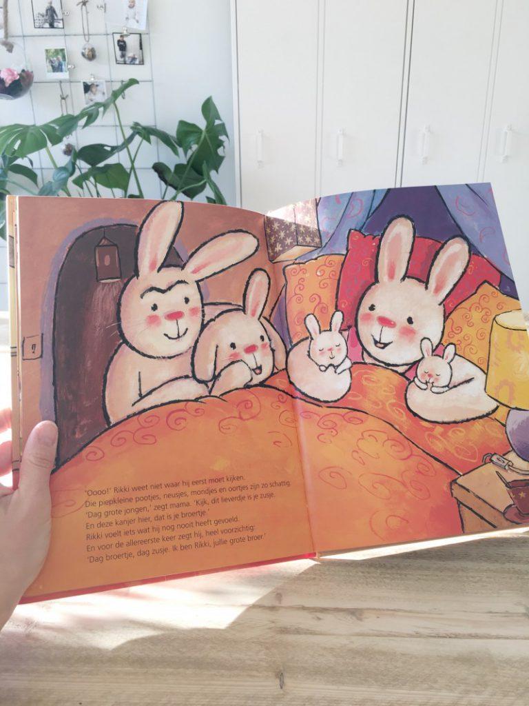 FullSizeRender 514 768x1024 - Boekentips van Vince | grote broer worden