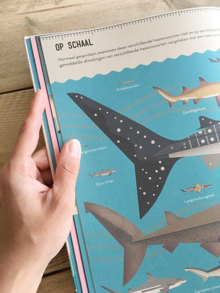 leuke weetjesboeken 10 768x1024 - Boeken voor nieuwsgierige kindjes die ALLES willen weten! & WIN!