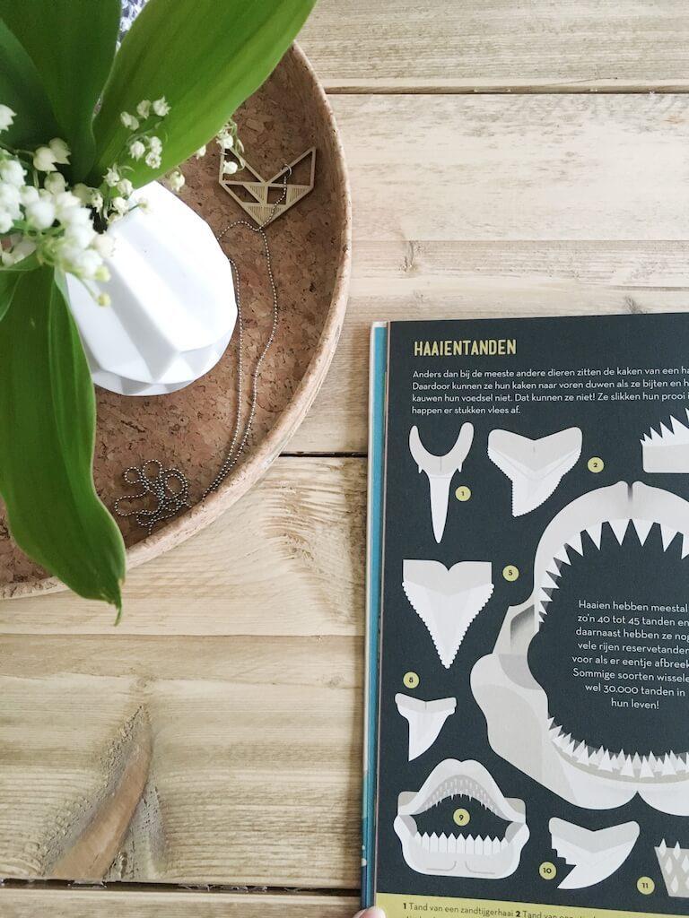leuke weetjesboeken 7 768x1024 - Boeken voor nieuwsgierige kindjes die ALLES willen weten! & WIN!