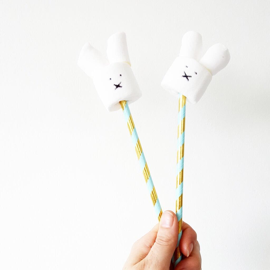 spekkies 1 - Birthday party van Beau, mét konijnenkroon