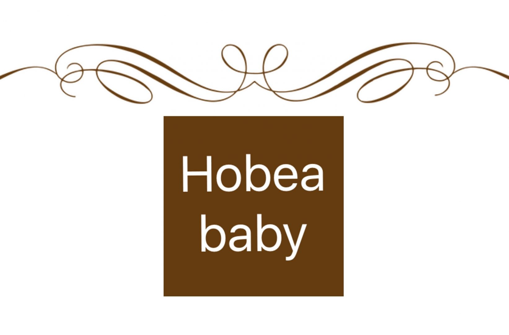 logo hobea 2017 - In de media