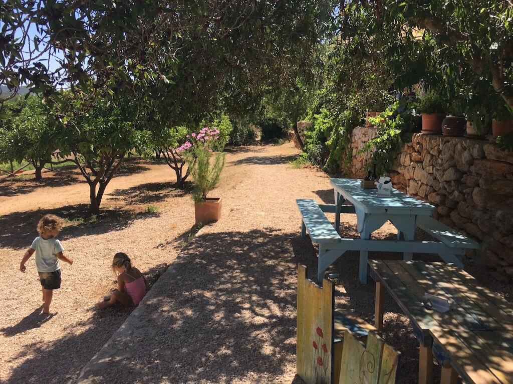 IMG 7857 - Diary 95 | Onze reis naar Ibiza
