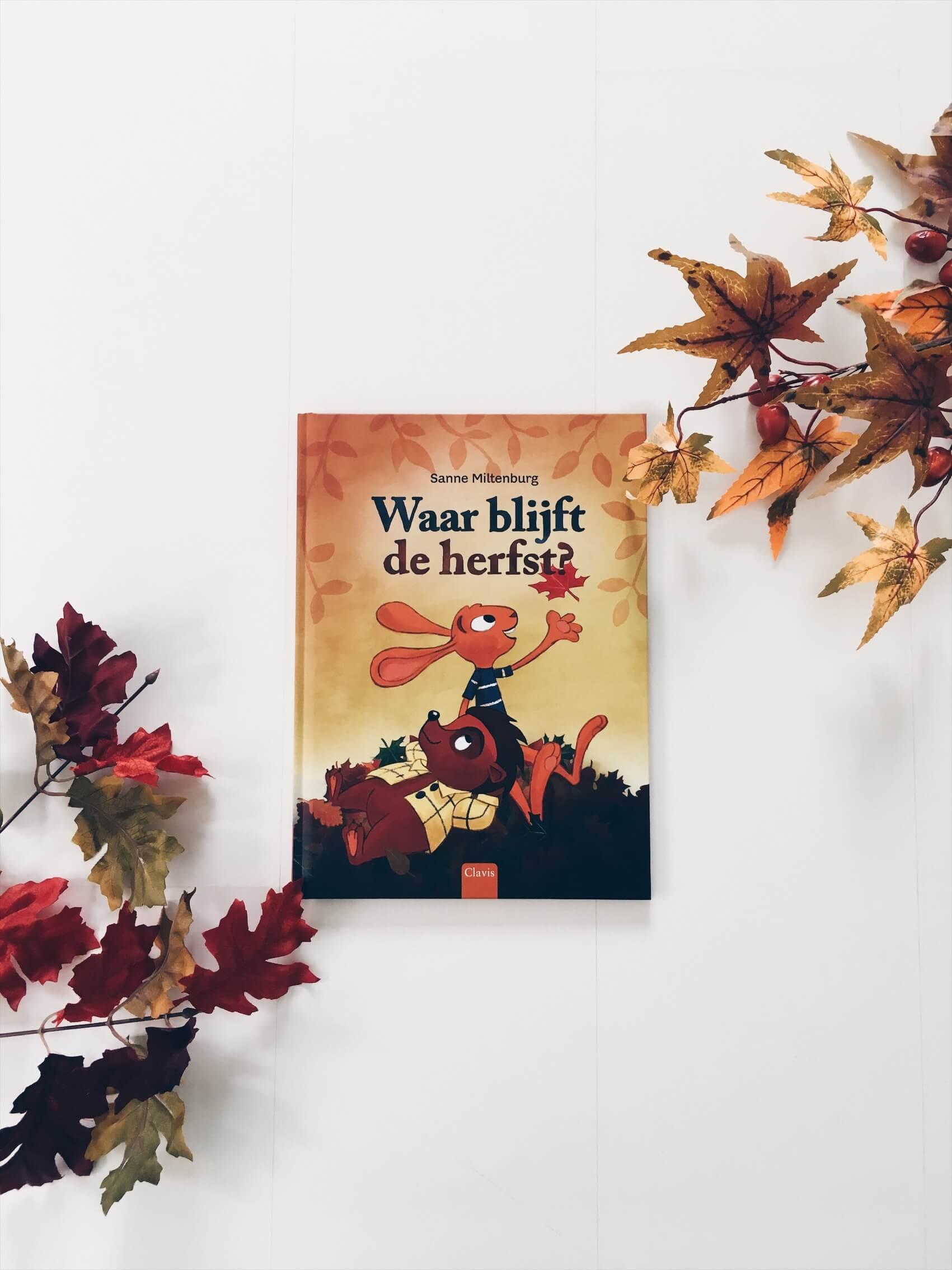1EDF285F 776E 4DFE 876D FCB556C2FDE1 - Leuke kinderboeken over de herfst voor grote en kleine kinderen