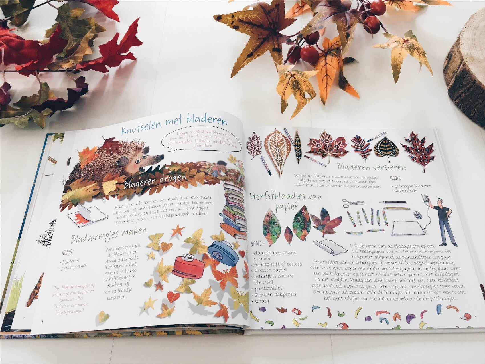 F7015CE8 E653 4902 8854 09D0D53080B7 - Leuke kinderboeken over de herfst voor grote en kleine kinderen