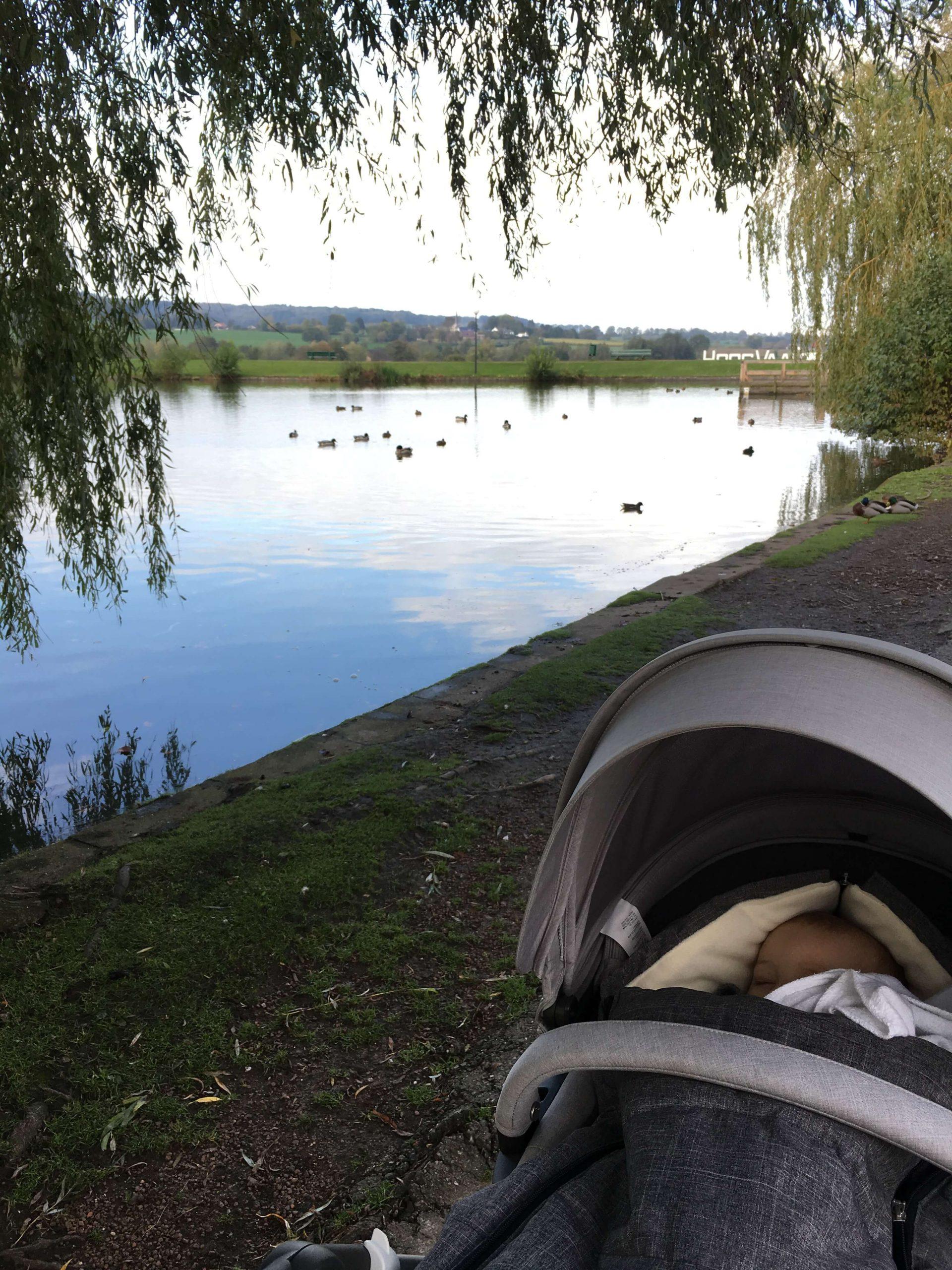 IMG 2381 - Wij gingen naar Landal Hoog Vaals, genieten van de natuur
