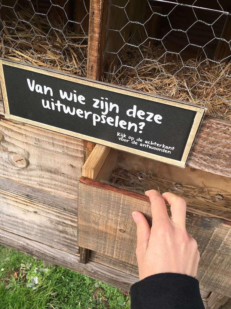 IMG 2421 - Wij gingen naar Landal Hoog Vaals, genieten van de natuur
