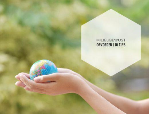 IMG 3054 520x400 - 10  tips om milieubewust op te voeden
