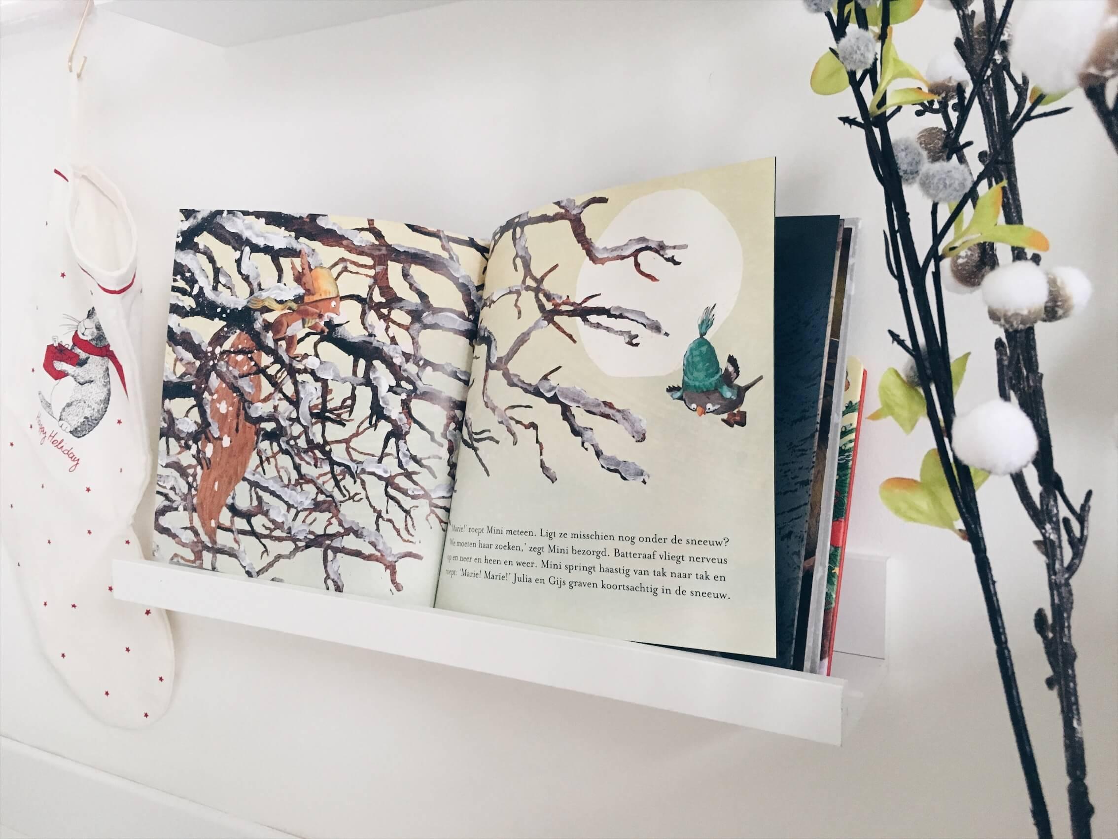 A858FFFD B254 4B87 859D 2BED318A36B2 - Leuke en mooie (prenten)boeken voor de winterdagen