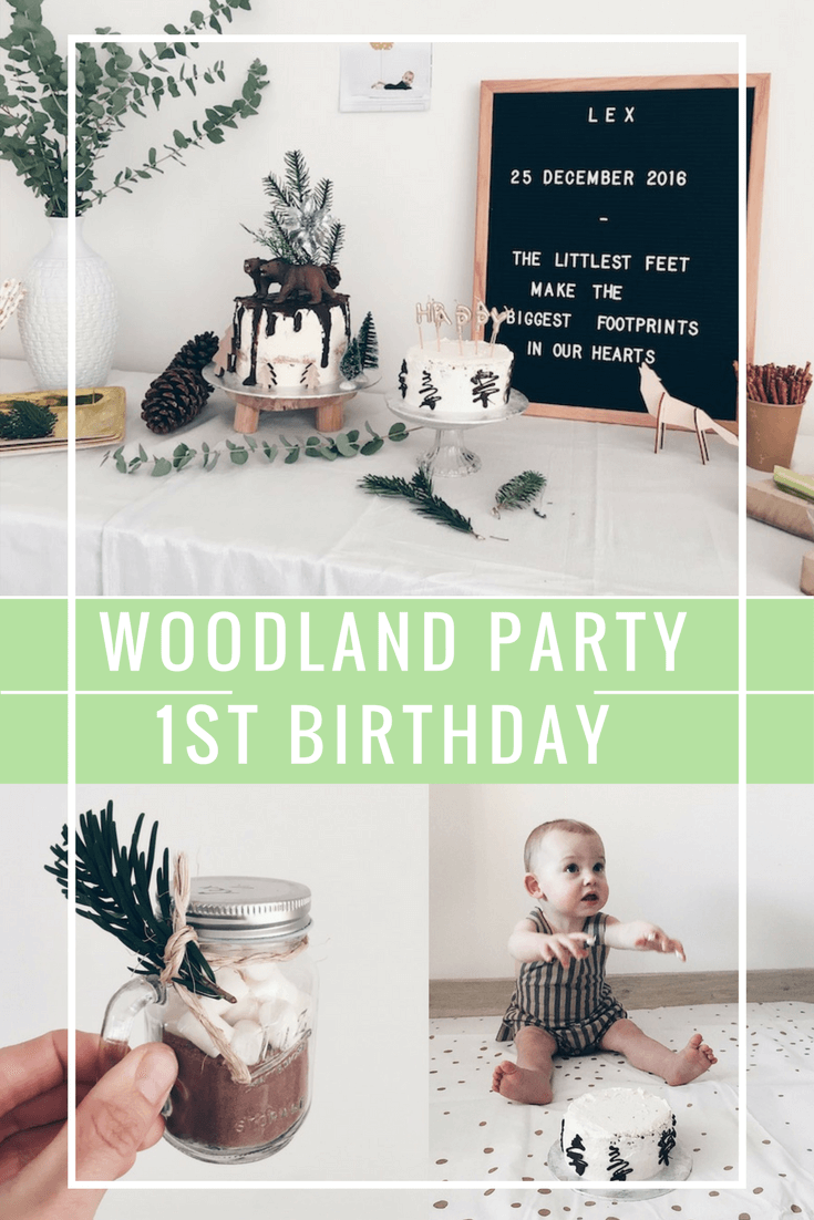 oatmeal cookies 5 2 - Lex turns one / WOODLAND BIRTHDAY PARTY!