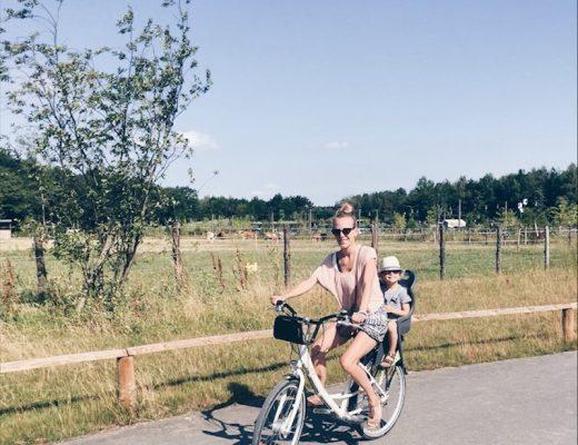villages nature paris - unicorns & fairytales