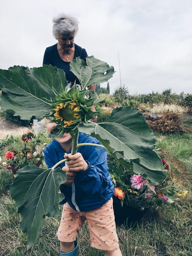 DE5B6F07 8881 4C86 8EF6 36650E40B6C6 - Wij gingen zelf onze bloemen plukken op moederdag