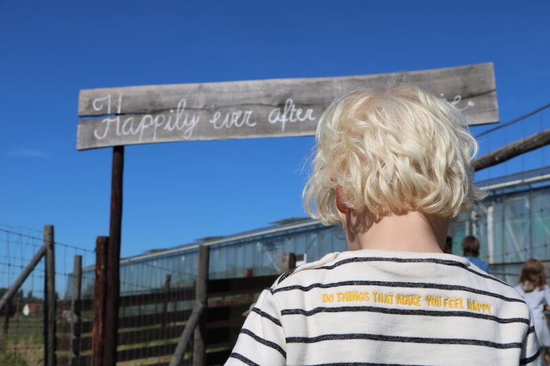 kinderboerderij struisvogelnest - unicorns & fairytales