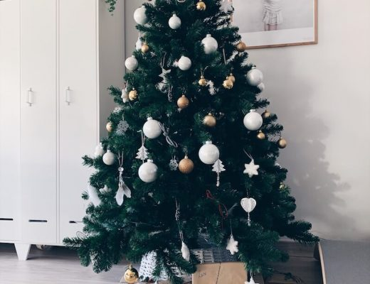 magie van december - unicorns & fairytales