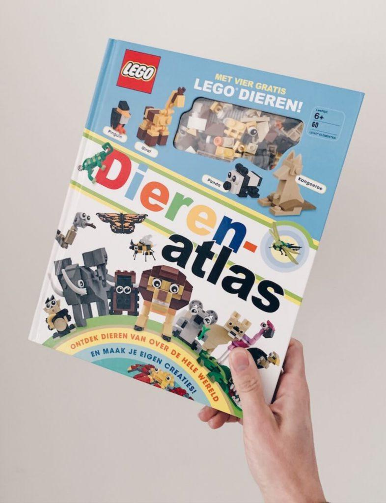 CD0CDF2F 5E92 4BBE A7CD B7188135E90E 2 786x1024 - Creatieve en leerrijke speeltips met DUPLO & LEGO