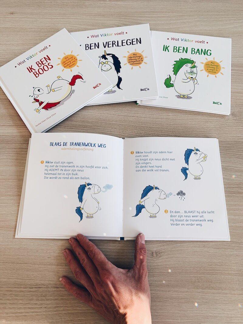 boekjes gevoelens bij kinderen - unicorns & fairytales