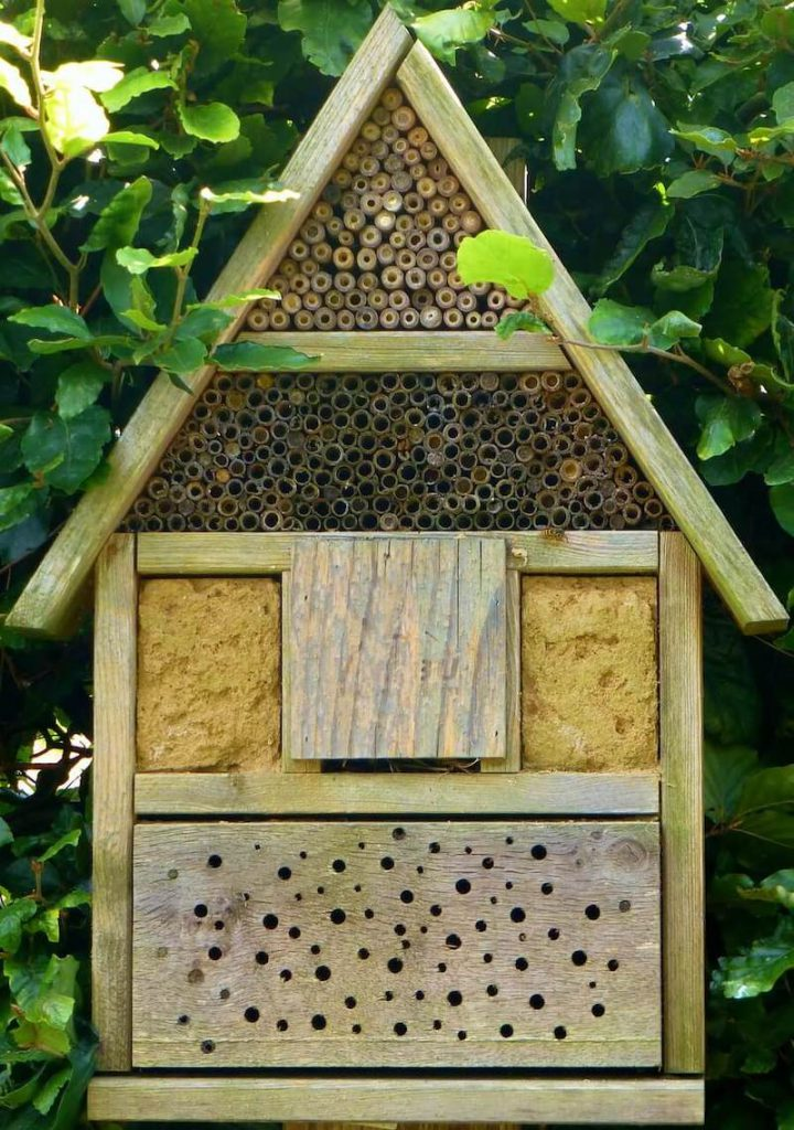 """insect hotel 883096 1280 720x1024 - """"De week van de bij"""" beleven met je kinderen: enkele tips!"""
