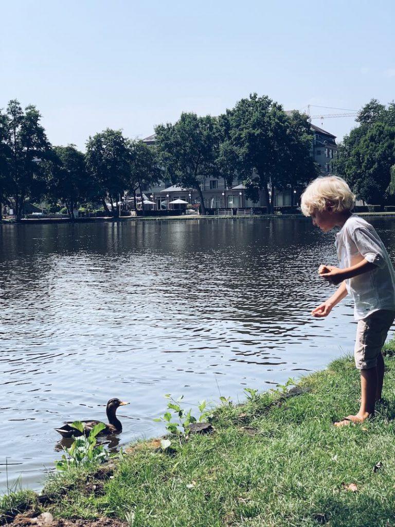 Limburg met kinderen - unicorns & fairytales