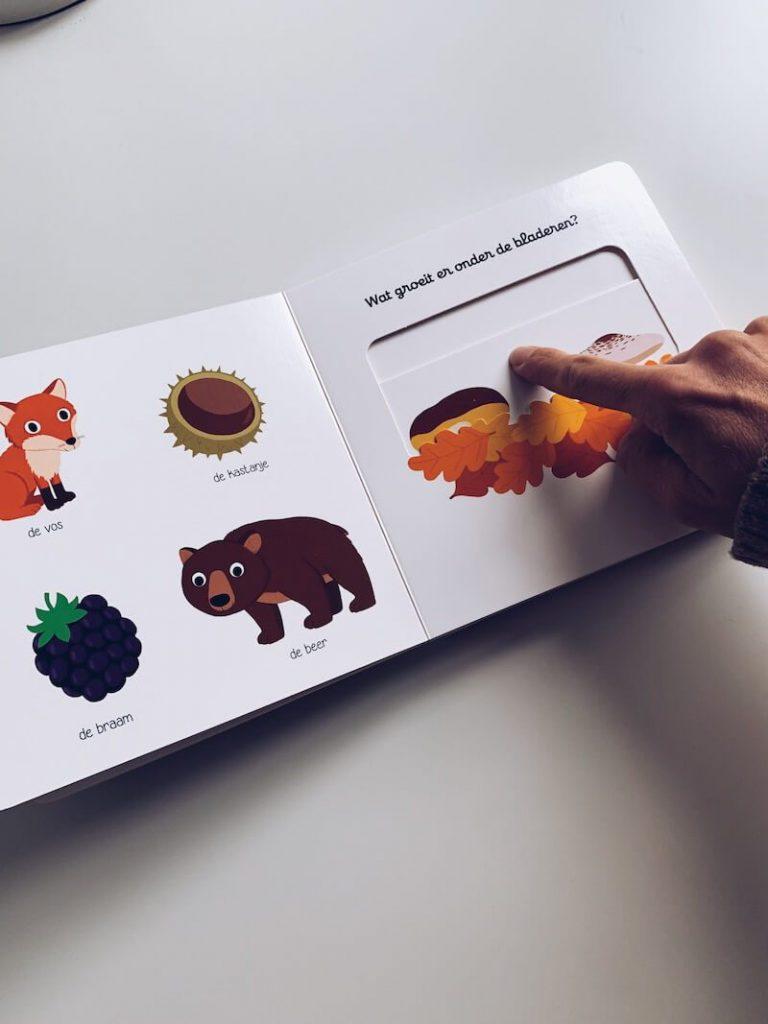 2FCCB7EC FBB8 40D7 9699 C71502D73B9C 768x1024 - Leuke kinderboeken over de herfst voor grote en kleine kinderen
