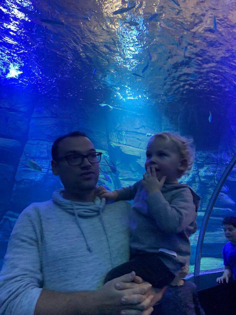 IMG 7439 768x1024 - Wij gingen naar Nausicaa, het grootste aquarium van Europa!