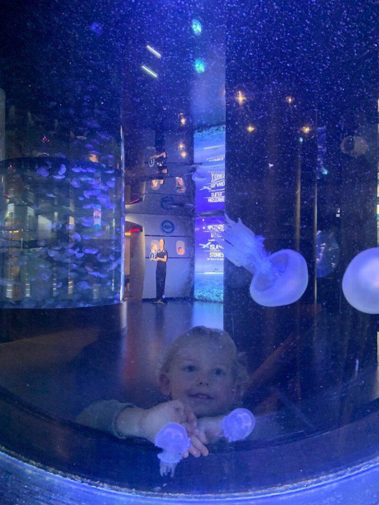 IMG 7497 768x1024 - Wij gingen naar Nausicaa, het grootste aquarium van Europa!