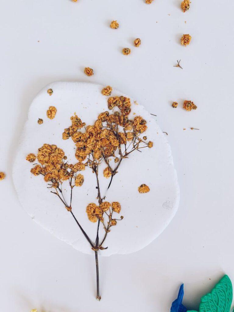 0646A6A6 4DD8 4CFA B5B1 211902EB8366 768x1024 - Afdrukken maken van bloemen, blaadjes en insecten in klei