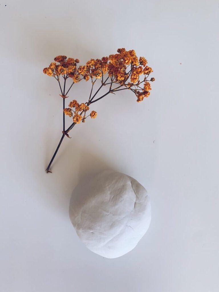 95E1F75B 4905 4586 83B7 CBC1092F9BA3 768x1024 - Afdrukken maken van bloemen, blaadjes en insecten in klei