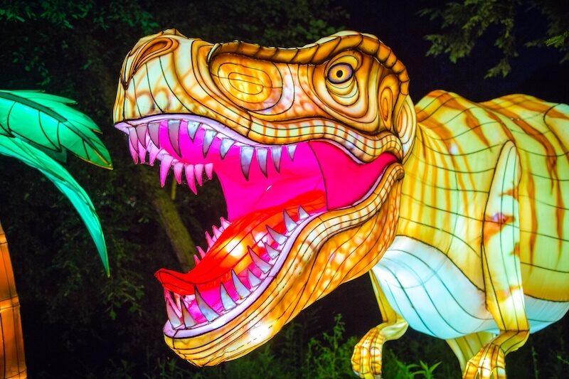 dinolights zoo planckendael 2 1 1 - Leuke dino activiteiten met kinderen
