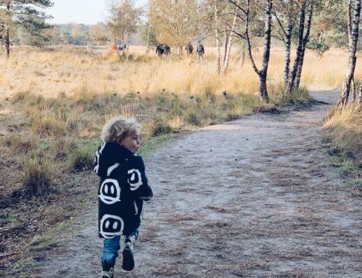 immuunsysteem van je kind opbouwen - unicorns & fairytales
