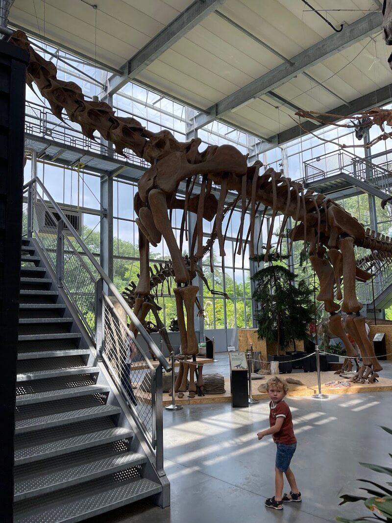 musea voor kinderen - unicorns & fairytales